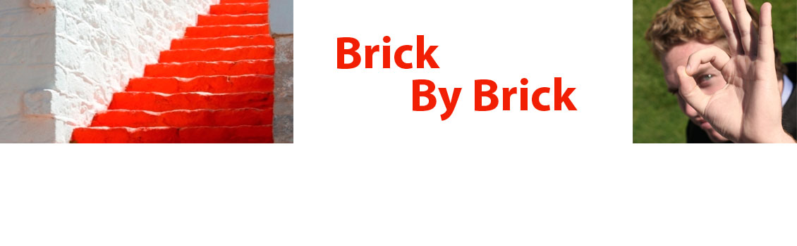 BRICK BY BRICK: Live! Experience! Learn!